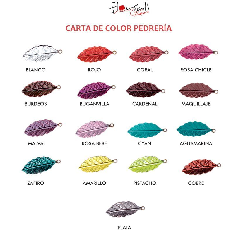 CARTA DE COLOR PEDRERÍA